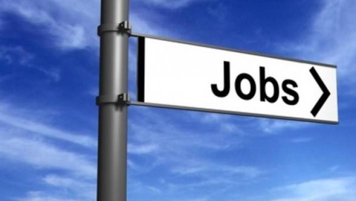 Locuri de muncă pentru absolvenți