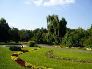 Ateliere pentru copii în Parcul Botanic