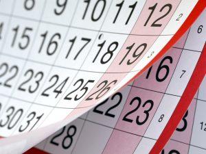 Calendarul pentru concursul de titularizare în învăţământul preuniversitar