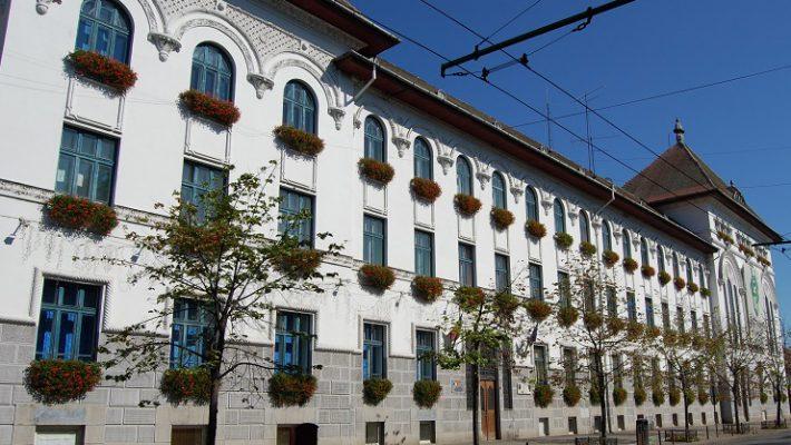 Programul Primăriei Timișoara în perioada sărbătorilor de iarnă