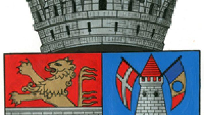 Dezbatere buget Timișoara