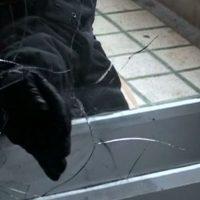 """Polițiștii timișeni desfășoară activități în cadrul campaniei """"Prevenirea, cheia siguranței"""""""